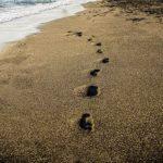 kroky ke spravne zadanemu ukolu