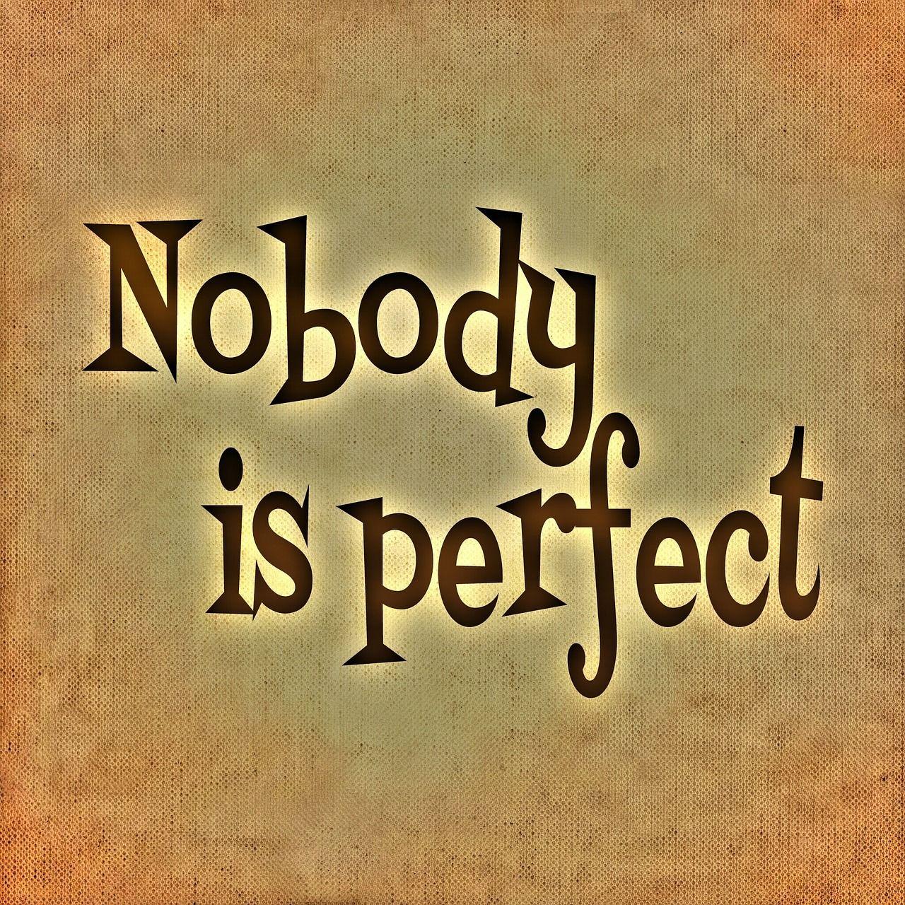 nikdo není dokonalý